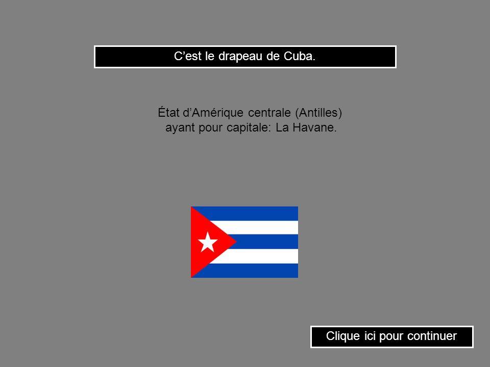 Clique sur le drapeau du Chili. État dAmérique du sud ayant pour capitale: Santiago.