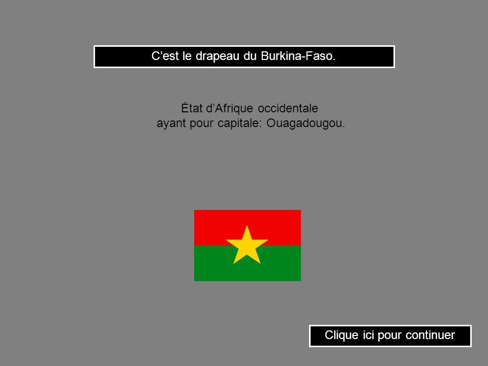 Clique sur le drapeau de la Moldavie. État dEurope ayant pour capitale: Chisinau.