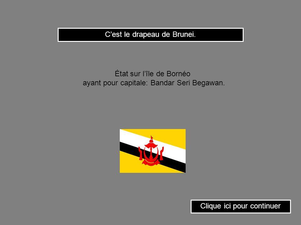 Cest le drapeau du Burkina-Faso. Clique ici pour continuer État dAfrique occidentale ayant pour capitale: Ouagadougou.