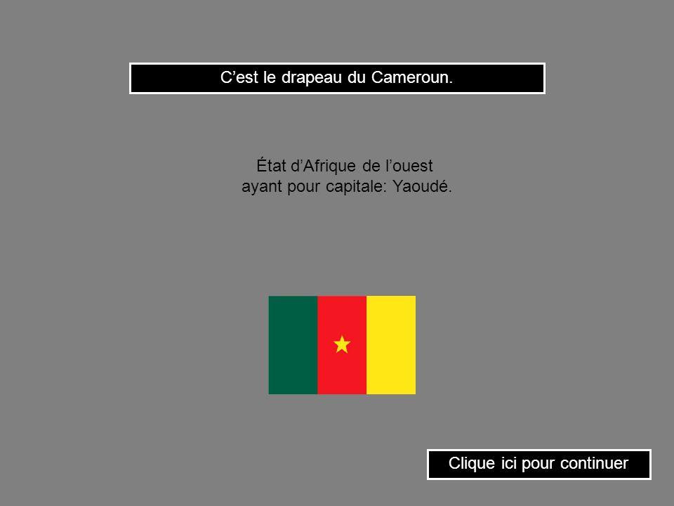 Cest le drapeau de la Guinée. État dAfrique occidentale ayant pour capitale: Conakry. Clique ici pour continuer