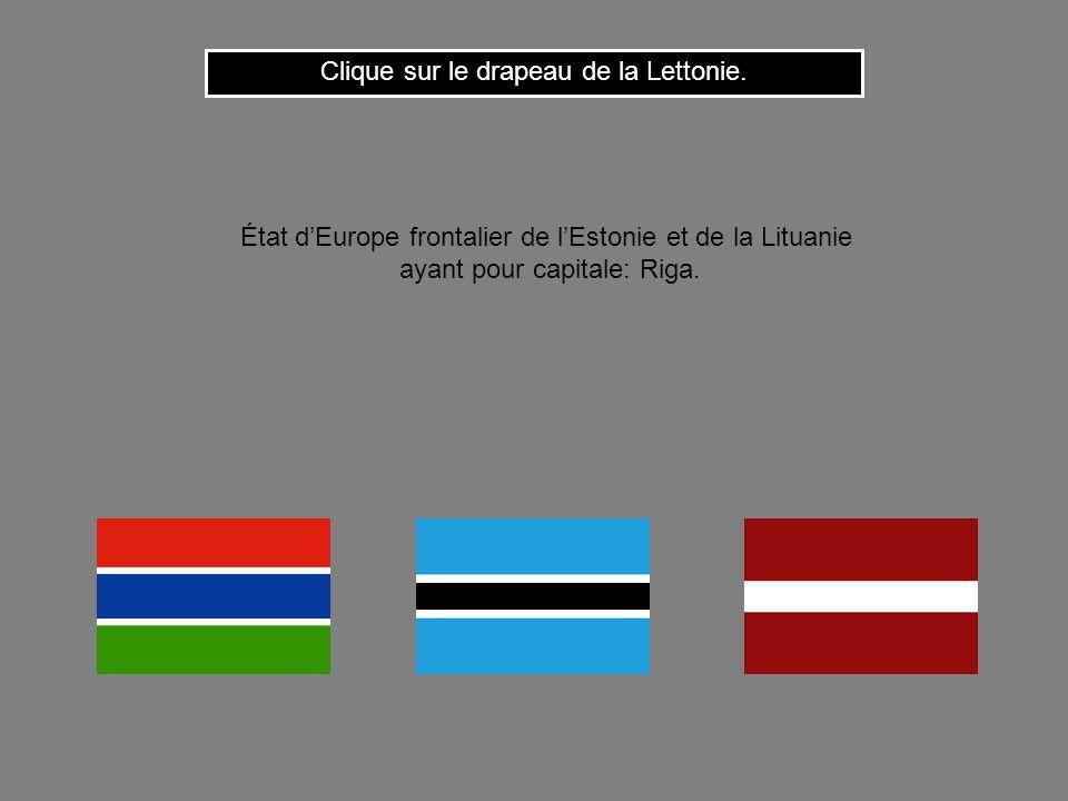 Cest le drapeau du Cameroun. État dAfrique de louest ayant pour capitale: Yaoudé. Clique ici pour continuer