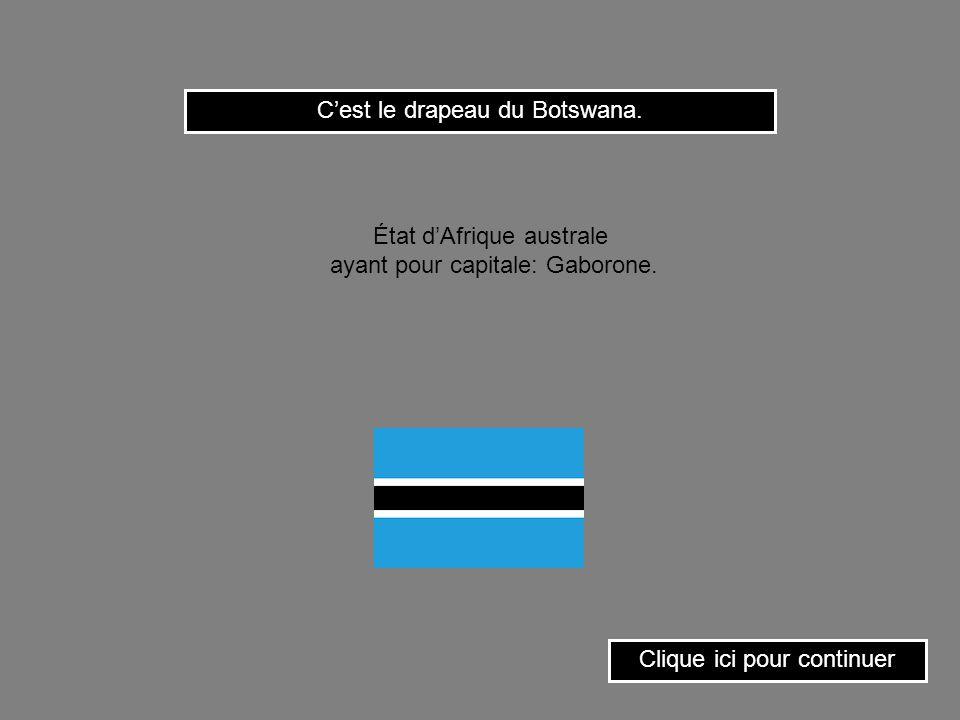 Cest le drapeau de la Gambie. Clique ici pour continuer État dAfrique occidentale ayant pour capitale: Banjul.