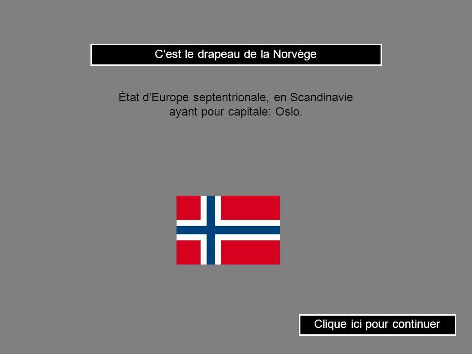 Cest le drapeau du Burkina-Faso.