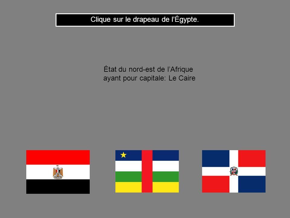 Cest le drapeau du Zaïre. Clique ici pour continuer État dAfrique équatoriale ayant pour capitale: Kinshasa