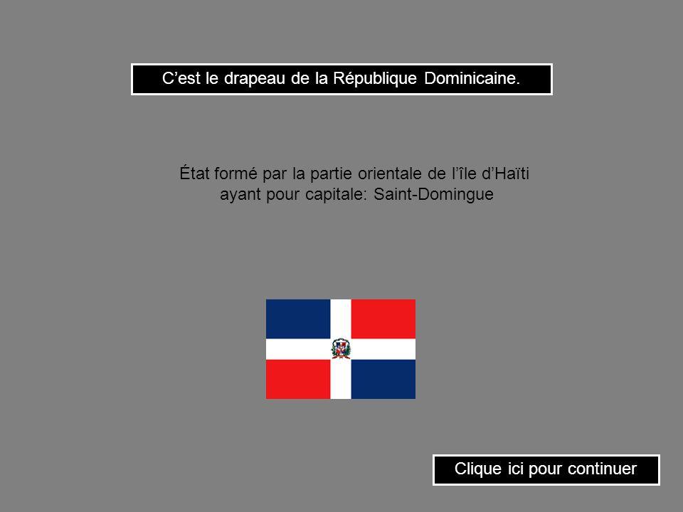 Cest le drapeau de la République Centrafricaine. Clique ici pour continuer État dAfrique équatoriale ayant pour capitale: Bangui.