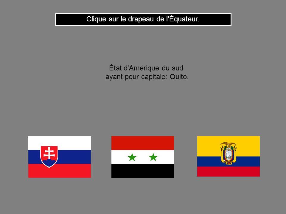 Cest le drapeau de la République Dominicaine. Clique ici pour continuer État formé par la partie orientale de lîle dHaïti ayant pour capitale: Saint-D