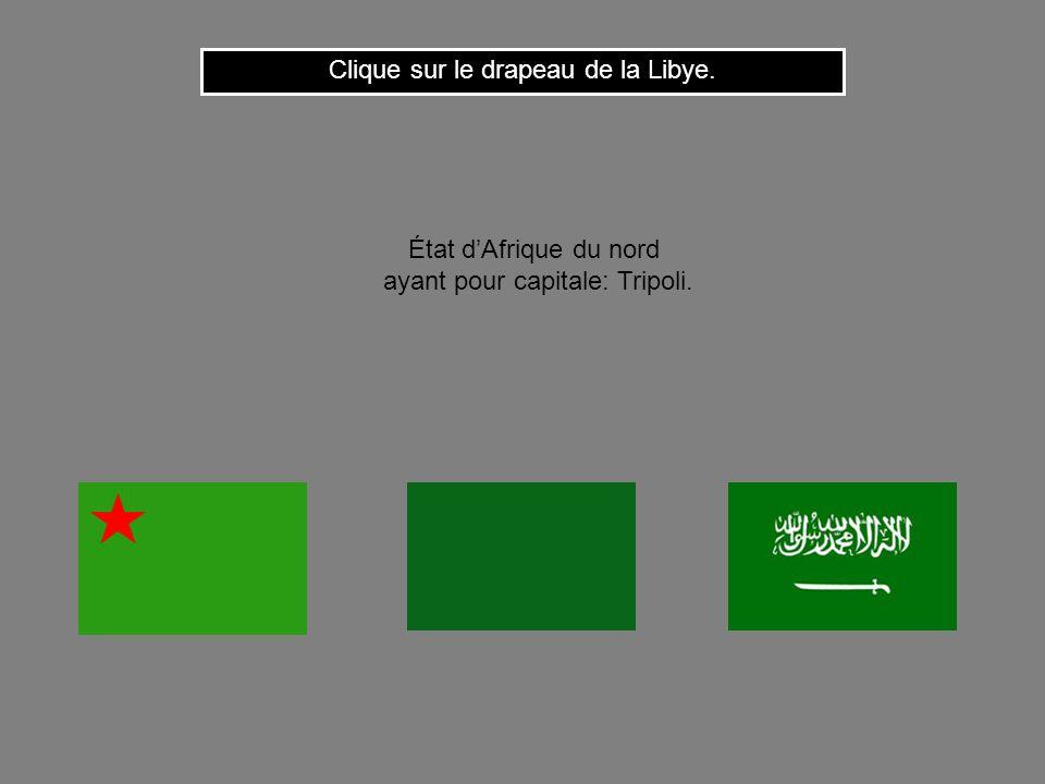 Cest le drapeau du Nigéria. Clique ici pour continuer État dAfrique occidentale ayant pour capitale: Abuja.
