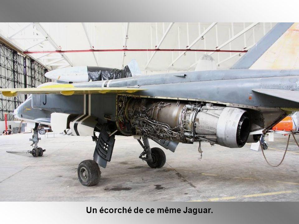 Le Jaguar « Marine » ayant été essayé mais pas adopté