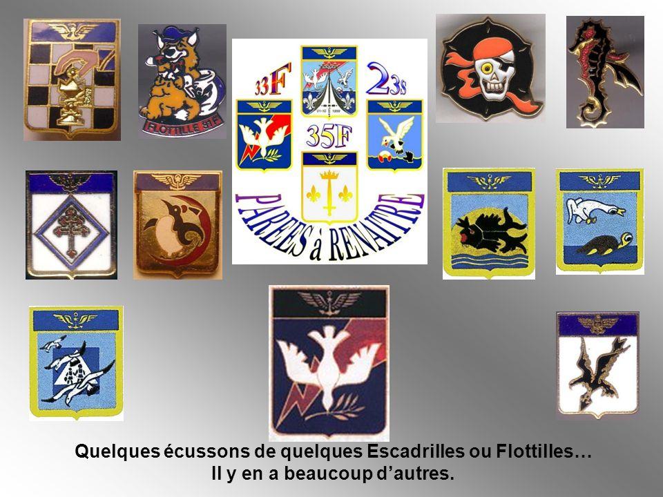 LAéronautique Navale de la France a célébré ses 100 ans dexistence cette année.