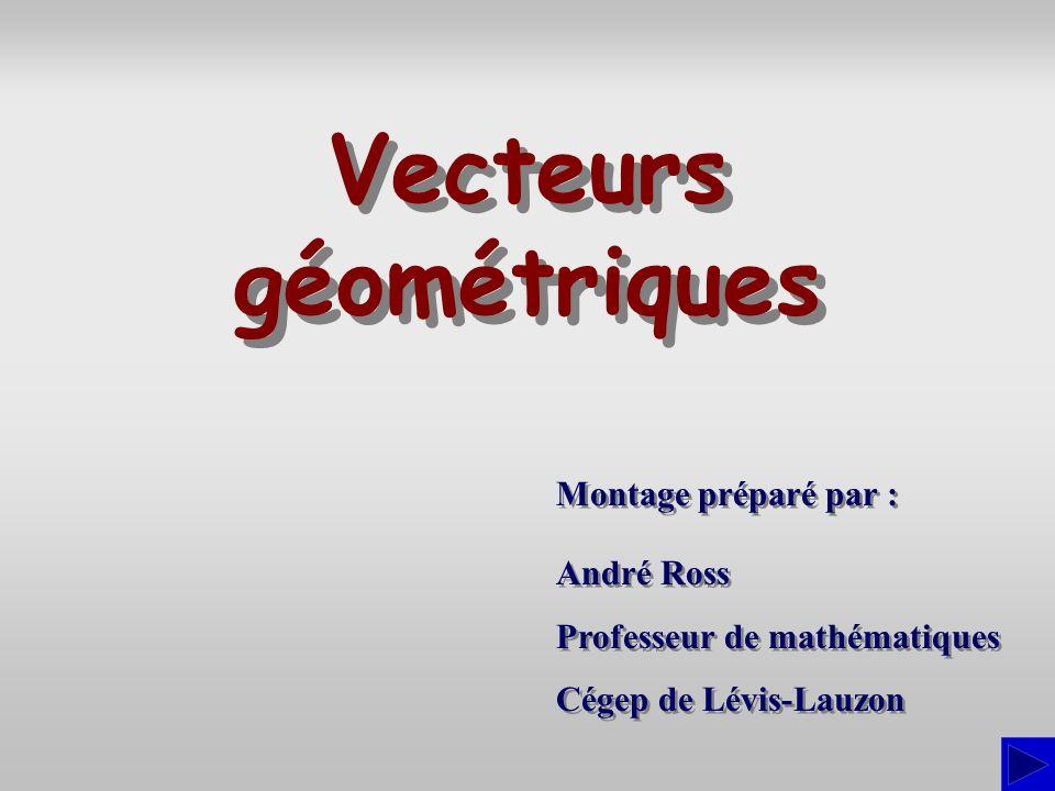 Montage préparé par : André Ross Professeur de mathématiques Cégep de Lévis-Lauzon André Ross Professeur de mathématiques Cégep de Lévis-Lauzon Vecteurs géométriques