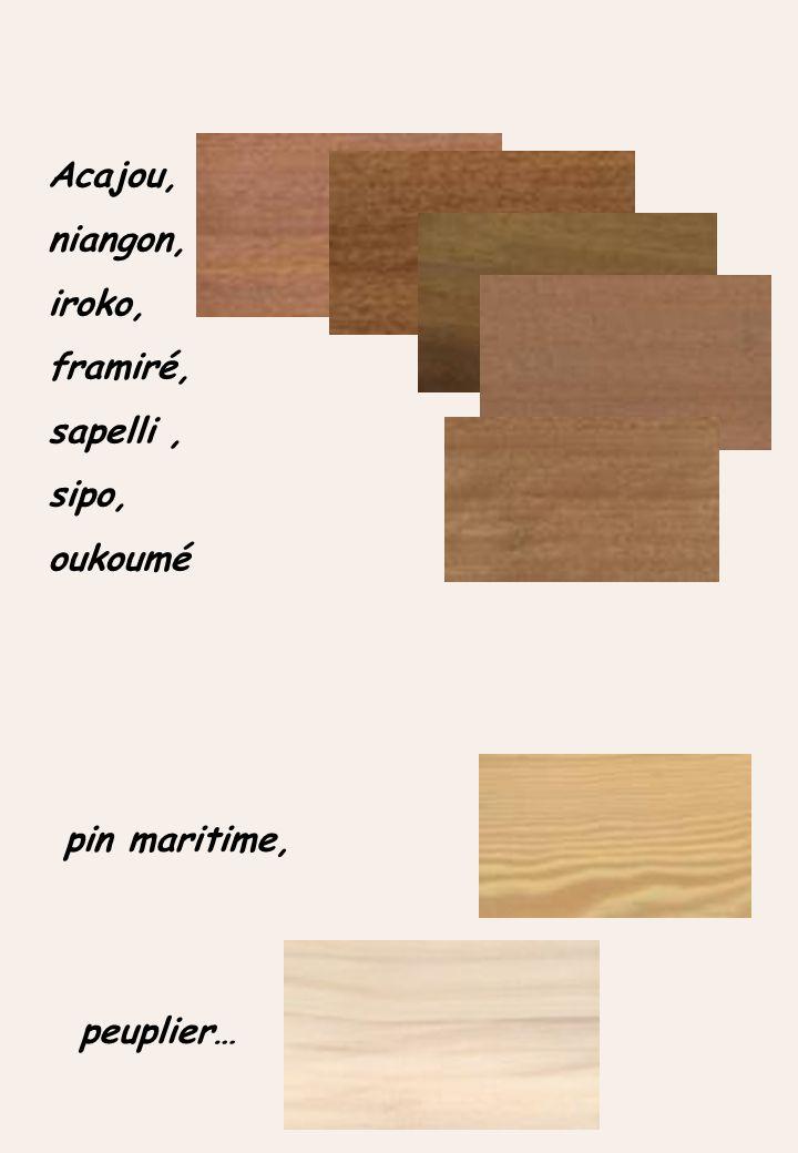 Acajou, niangon, iroko, framiré, sapelli, sipo, oukoumé pin maritime, peuplier…
