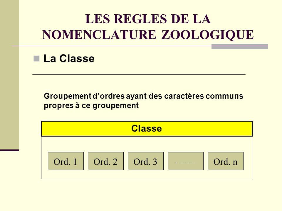 LES REGLES DE LA NOMENCLATURE ZOOLOGIQUE La Classe Ord.