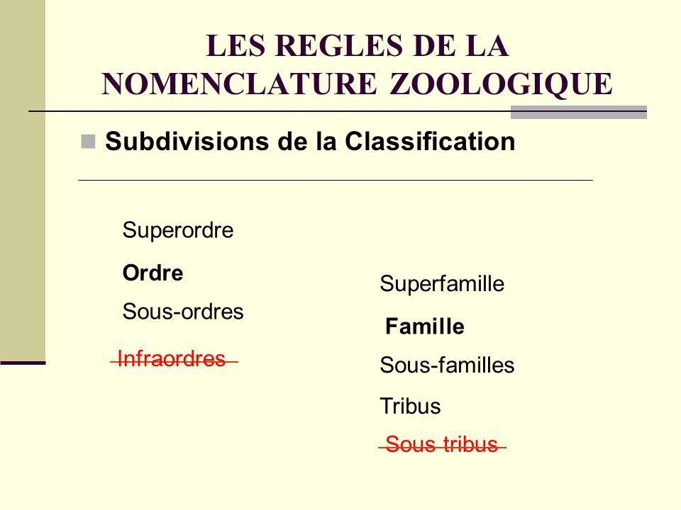 LES REGLES DE LA NOMENCLATURE ZOOLOGIQUE Subdivisions de la Classification Ordre Famille Superfamille Sous-familles Tribus Sous tribus Infraordres Superordre Sous-ordres