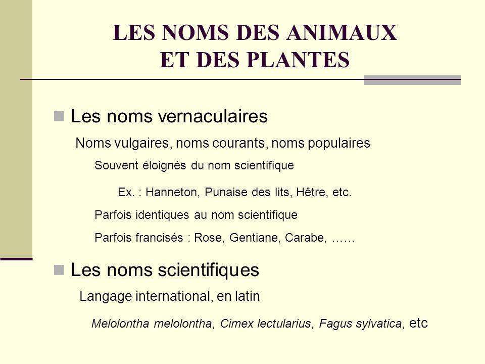 LES NOMS DES ANIMAUX ET DES PLANTES Les noms vernaculaires Les noms scientifiques Noms vulgaires, noms courants, noms populaires Ex.