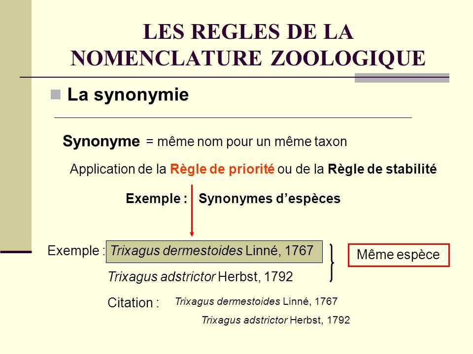 LES REGLES DE LA NOMENCLATURE ZOOLOGIQUE La synonymie Synonyme = même nom pour un même taxon Exemple : Synonymes despèces Application de la Règle de priorité ou de la Règle de stabilité Exemple : Trixagus dermestoides Linné, 1767 Trixagus adstrictor Herbst, 1792 Même espèce Trixagus dermestoides Linné, 1767 Trixagus adstrictor Herbst, 1792 Citation :