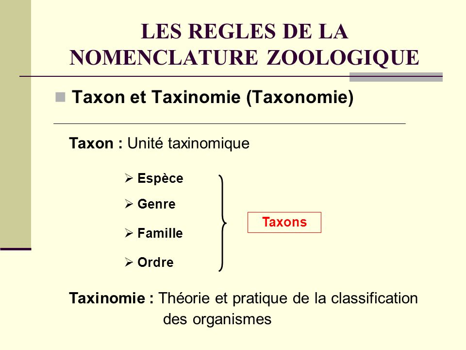 LES REGLES DE LA NOMENCLATURE ZOOLOGIQUE Taxon et Taxinomie (Taxonomie) Taxon : Unité taxinomique Taxinomie : Théorie et pratique de la classification des organismes Genre Famille Ordre Espèce Taxons