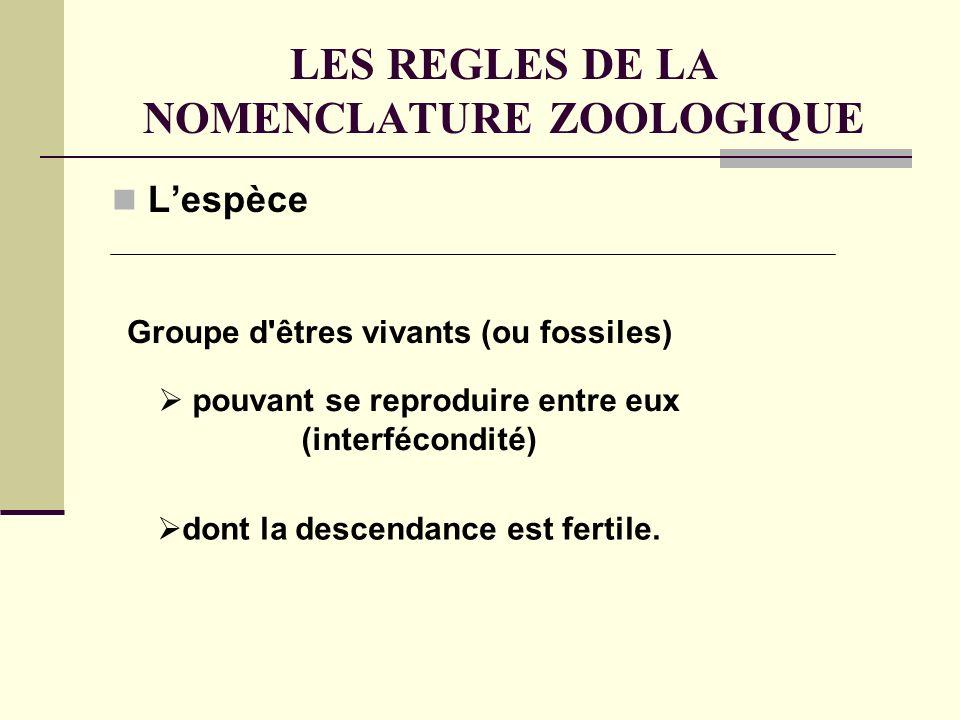 LES REGLES DE LA NOMENCLATURE ZOOLOGIQUE Lespèce Groupe d êtres vivants (ou fossiles) pouvant se reproduire entre eux (interfécondité) dont la descendance est fertile.