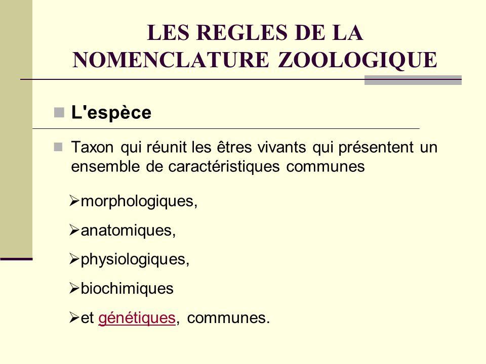 LES REGLES DE LA NOMENCLATURE ZOOLOGIQUE L espèce Taxon qui réunit les êtres vivants qui présentent un ensemble de caractéristiques communes morphologiques, anatomiques, physiologiques, biochimiques et génétiques, communes.génétiques