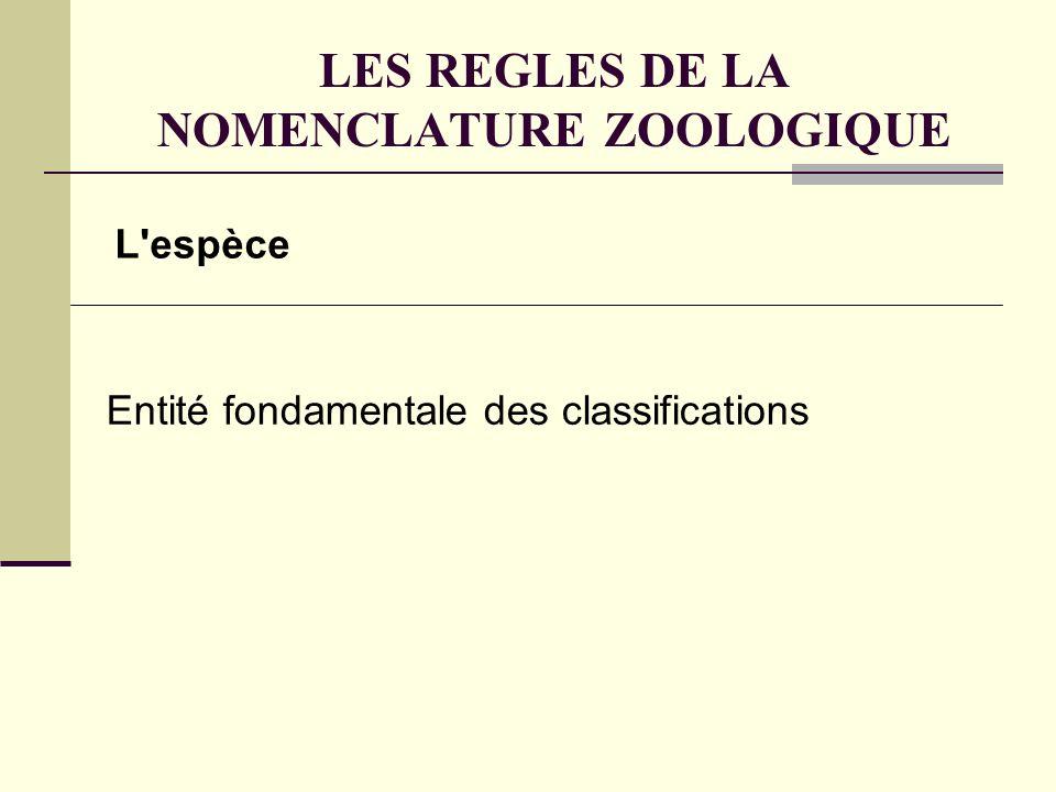 LES REGLES DE LA NOMENCLATURE ZOOLOGIQUE Le nom despèce Binom : Genre - espèce En latin (universel) En italique Suivi du nom dauteur + date de publication Homo sapiens Linnaeus, 1758