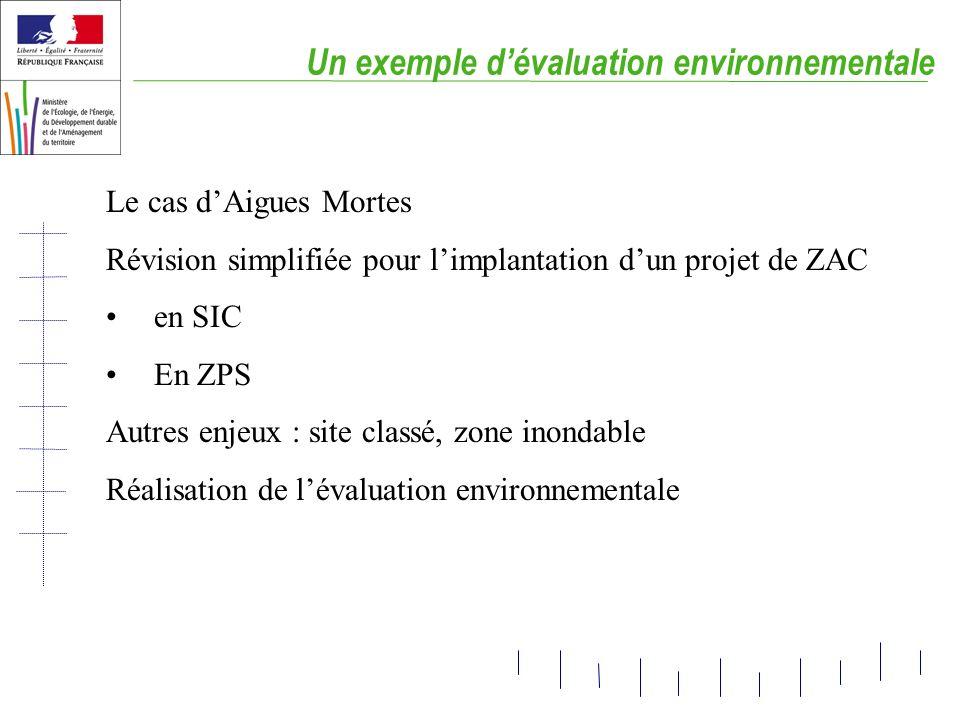 Un exemple dévaluation environnementale Le cas dAigues Mortes Révision simplifiée pour limplantation dun projet de ZAC en SIC En ZPS Autres enjeux : s