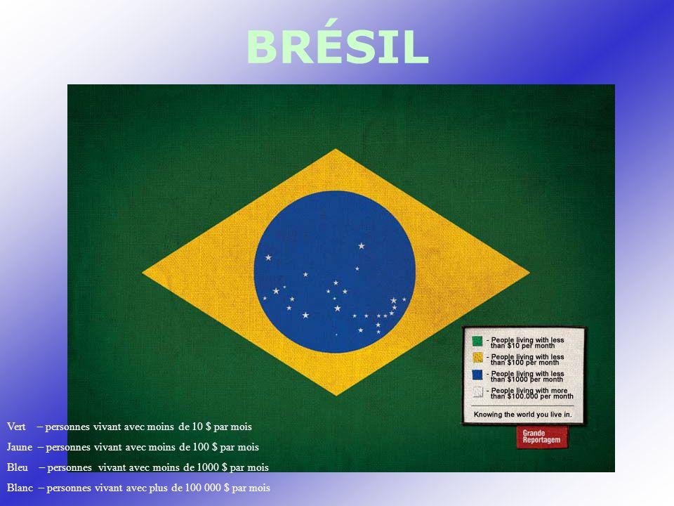 BRÉSIL Vert – personnes vivant avec moins de 10 $ par mois Jaune – personnes vivant avec moins de 100 $ par mois Bleu – personnes vivant avec moins de