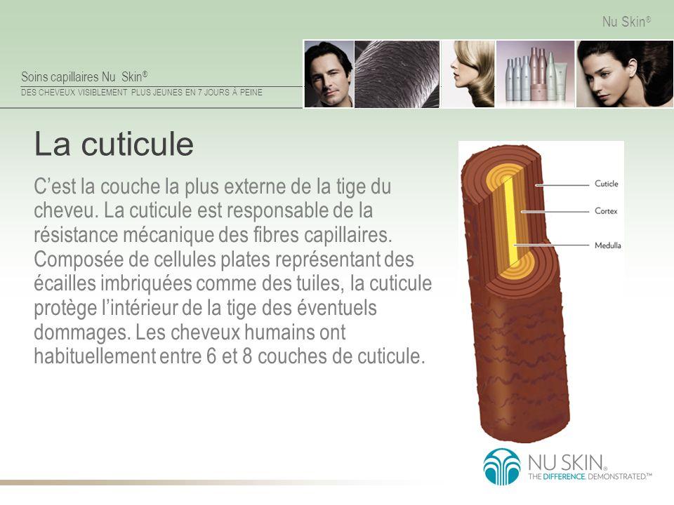 Soins capillaires Nu Skin ® DES CHEVEUX VISIBLEMENT PLUS JEUNES EN 7 JOURS À PEINE Nu Skin ® La cuticule Cest la couche la plus externe de la tige du