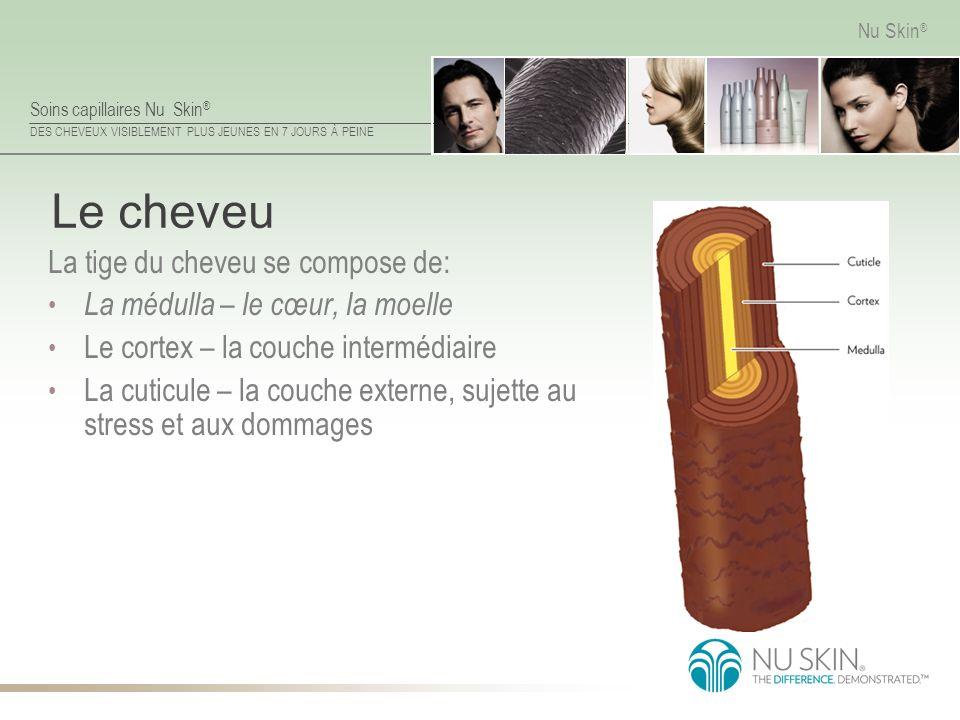 Soins capillaires Nu Skin ® DES CHEVEUX VISIBLEMENT PLUS JEUNES EN 7 JOURS À PEINE Nu Skin ® Le cheveu La tige du cheveu se compose de: La médulla – l