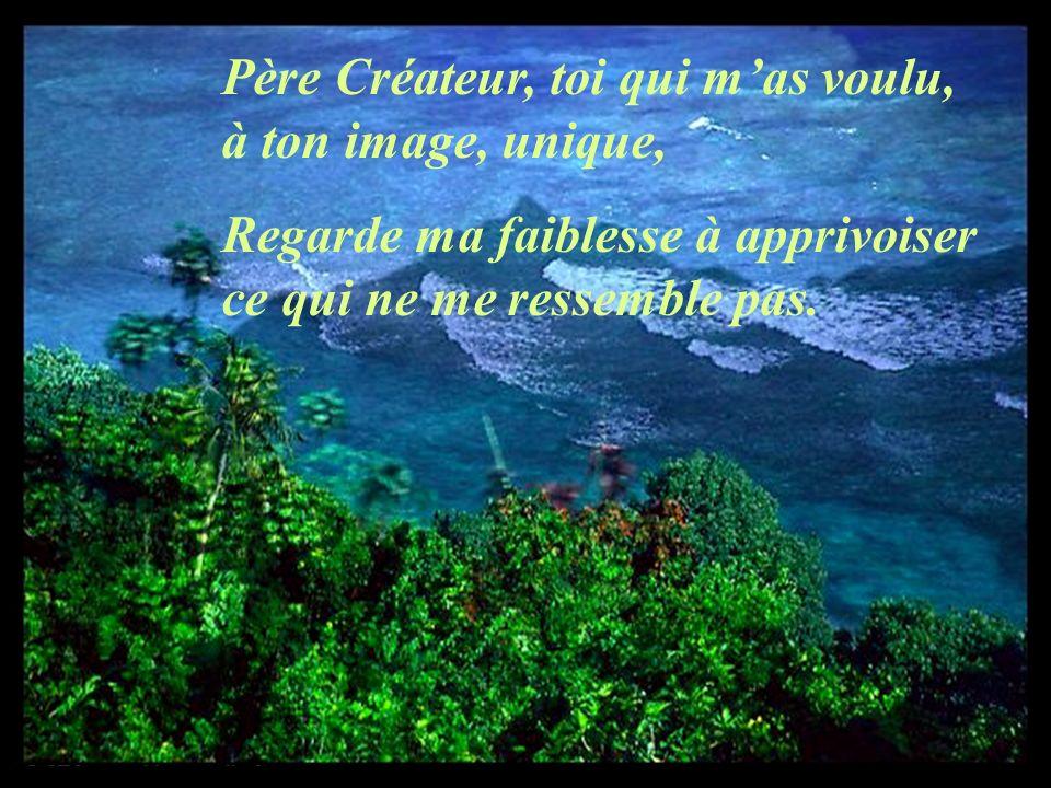 Père Créateur, toi qui mas voulu, à ton image, unique, Regarde ma faiblesse à apprivoiser ce qui ne me ressemble pas.