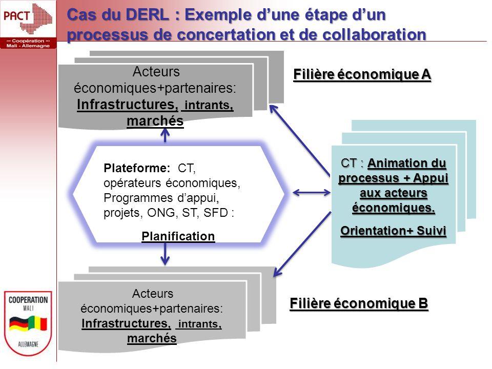 , Plateforme: CT, opérateurs économiques, Programmes dappui, projets, ONG, ST, SFD : Planification CT : Animation du processus + Appui aux acteurs économiques.