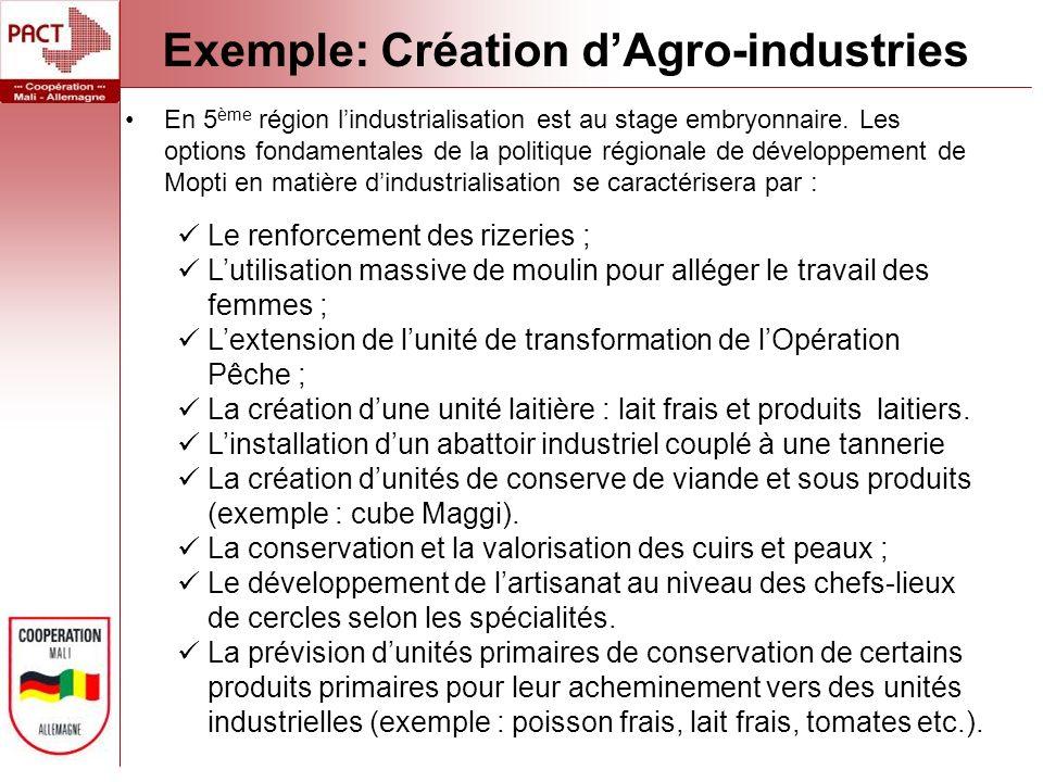 Exemple: Création dAgro-industries En 5 ème région lindustrialisation est au stage embryonnaire.