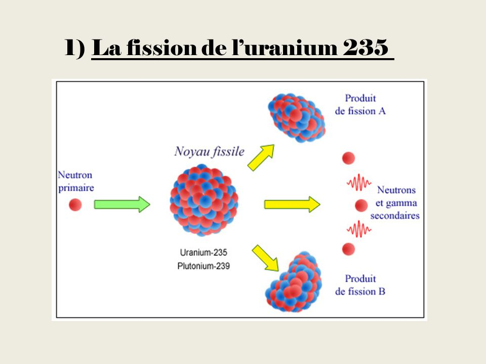 1) La fission de luranium 235
