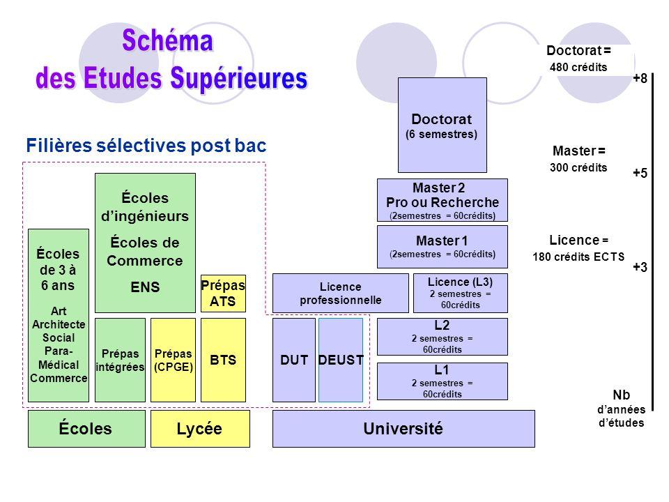 Licence = 180 crédits ECTS Doctorat = 480 crédits Licence professionnelle Licence (L3) 2 semestres = 60crédits L1 2 semestres = 60crédits L2 2 semestr