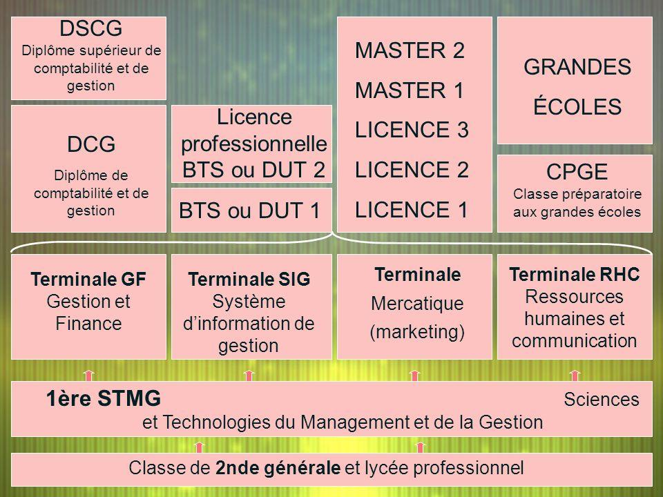 DCG Diplôme de comptabilité et de gestion BTS ou DUT 1 MASTER 2 MASTER 1 LICENCE 3 LICENCE 2 LICENCE 1 CPGE Classe préparatoire aux grandes écoles GRA