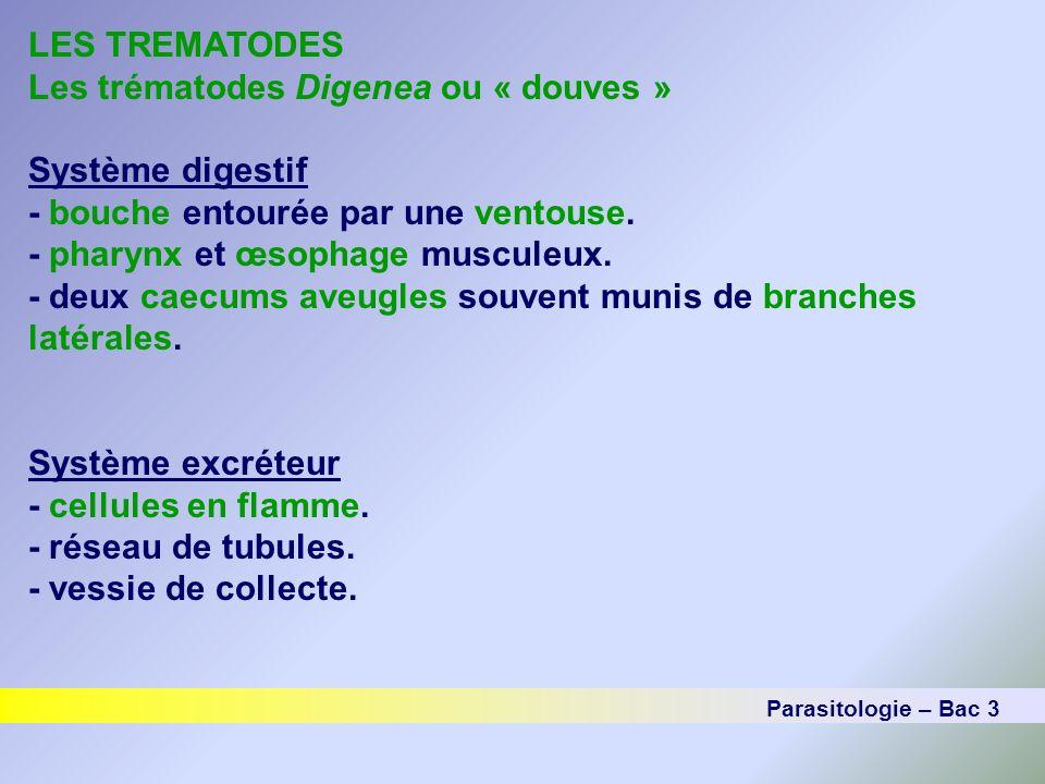LES TREMATODES Les trématodes Digenea ou « douves » Système digestif - bouche entourée par une ventouse. - pharynx et œsophage musculeux. - deux caecu