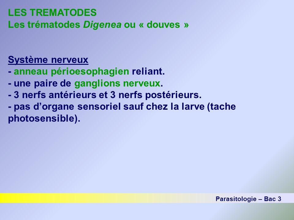 LES TREMATODES Les trématodes Digenea ou « douves » Système nerveux - anneau périoesophagien reliant. - une paire de ganglions nerveux. - 3 nerfs anté