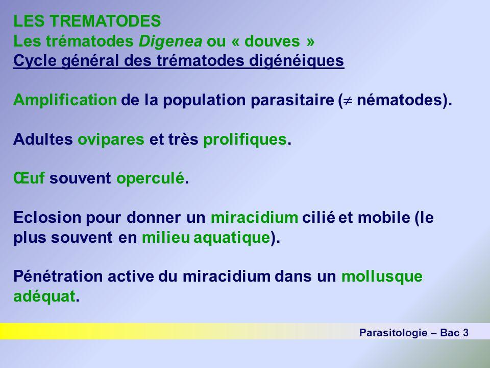 LES TREMATODES Les trématodes Digenea ou « douves » Cycle général des trématodes digénéiques Amplification de la population parasitaire ( nématodes).