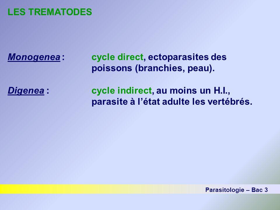 LES TREMATODES Monogenea :cycle direct, ectoparasites des poissons (branchies, peau). Digenea :cycle indirect, au moins un H.I., parasite à létat adul