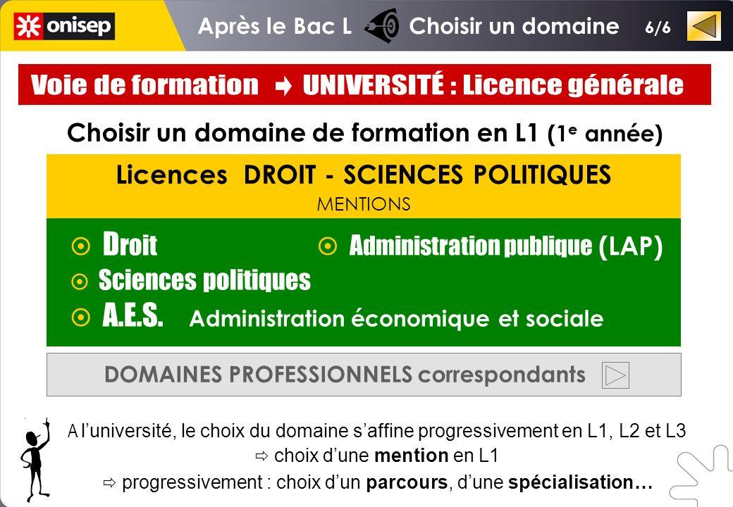 Licences DROIT - SCIENCES POLITIQUES MENTIONS D roit Sciences politiques A.E.S.