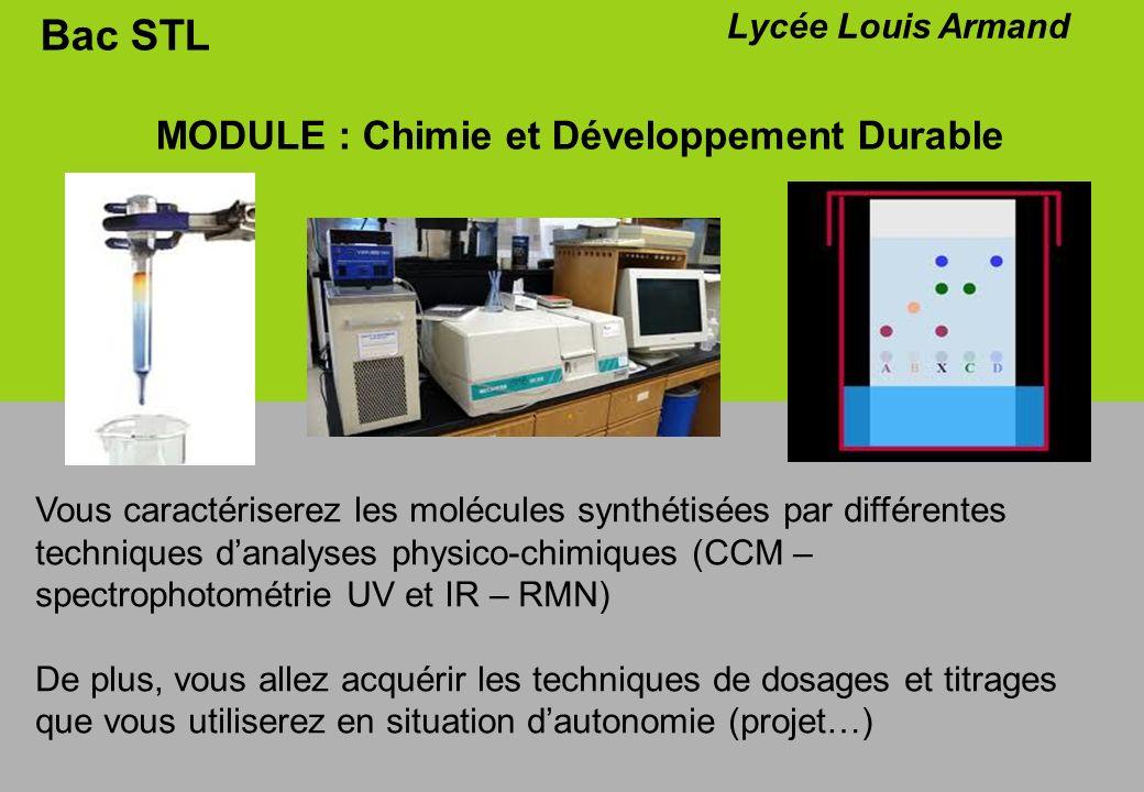 Bac STL MODULE : Chimie et Développement Durable Lycée Louis Armand Vous caractériserez les molécules synthétisées par différentes techniques danalyse