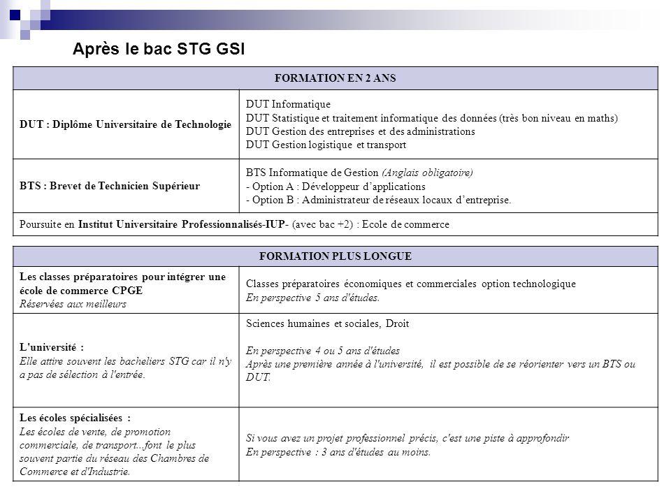 Après le bac STG GSI FORMATION EN 2 ANS DUT : Diplôme Universitaire de Technologie DUT Informatique DUT Statistique et traitement informatique des don
