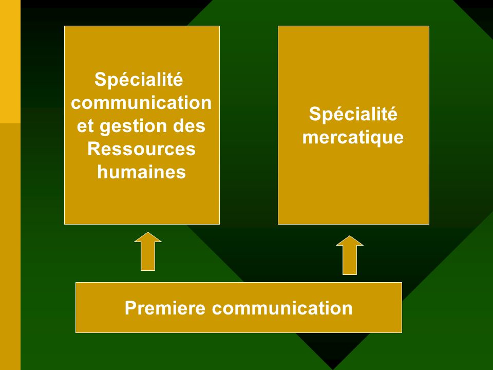 Premiere communication Spécialité communication et gestion des Ressources humaines Spécialité mercatique