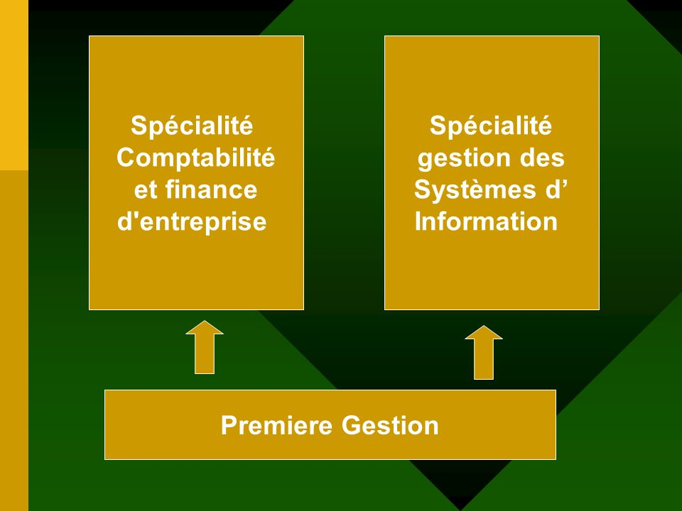 Premiere Gestion Spécialité Comptabilité et finance d entreprise Spécialité gestion des Systèmes d Information