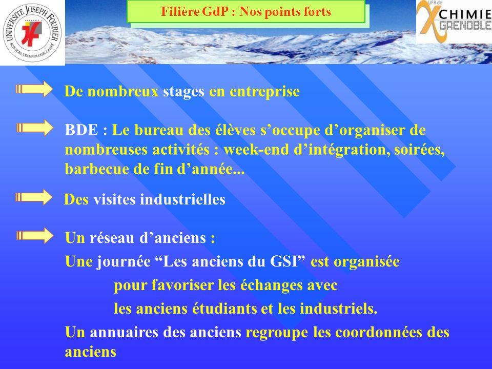 Filière GdP : Nos points forts BDE : Le bureau des élèves soccupe dorganiser de nombreuses activités : week-end dintégration, soirées, barbecue de fin