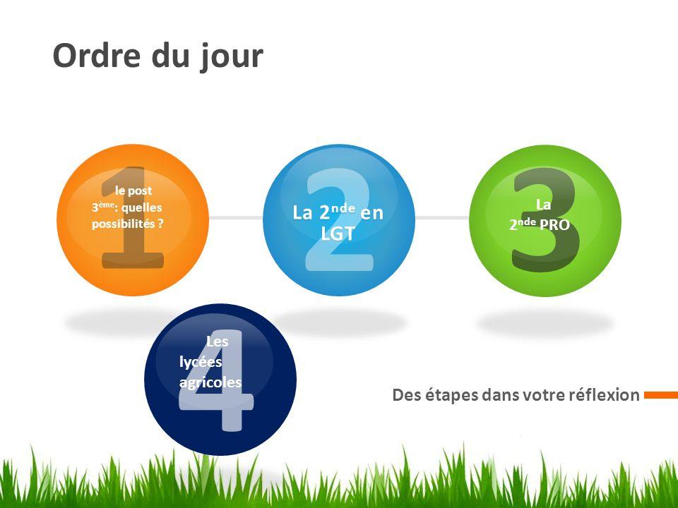 Ordre du jour Des étapes dans votre réflexion 1 le post 3 ème : quelles possibilités ? 2 La 2 nde en LGT 3 La 2 nde PRO Les lycées agricoles 4