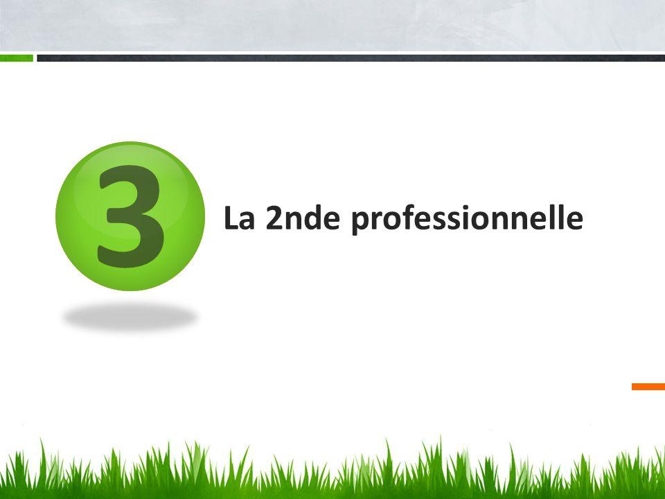 3 La 2nde professionnelle