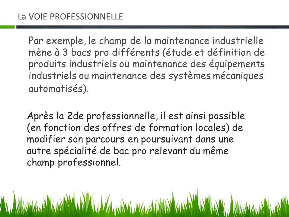 Par exemple, le champ de la maintenance industrielle mène à 3 bacs pro différents (étude et définition de produits industriels ou maintenance des équi