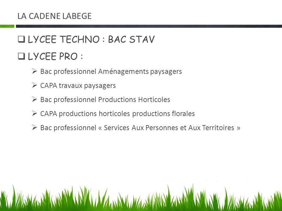 LA CADENE LABEGE LYCEE TECHNO : BAC STAV LYCEE PRO : Bac professionnel Aménagements paysagers CAPA travaux paysagers Bac professionnel Productions Hor