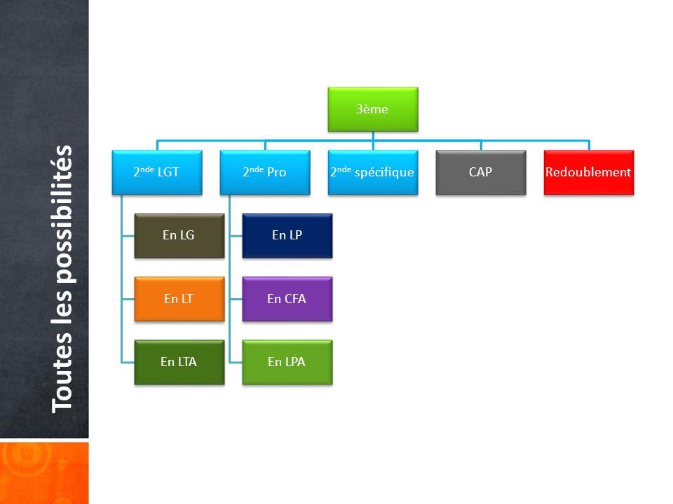 Toutes les possibilités 3ème 2 nde LGT En LG En LT En LTA 2 nde Pro En LP En CFA En LPA 2 nde spécifiqueCAPRedoublement