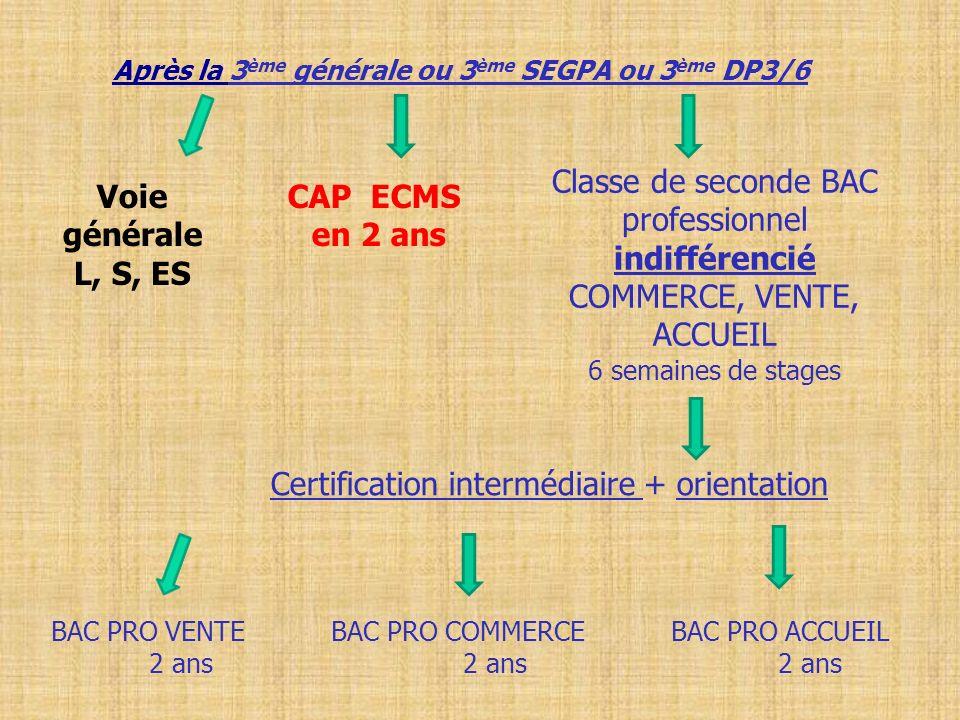 Après la 3 ème générale ou 3 ème SEGPA ou 3 ème DP3/6 Classe de seconde BAC professionnel indifférencié COMMERCE, VENTE, ACCUEIL 6 semaines de stages