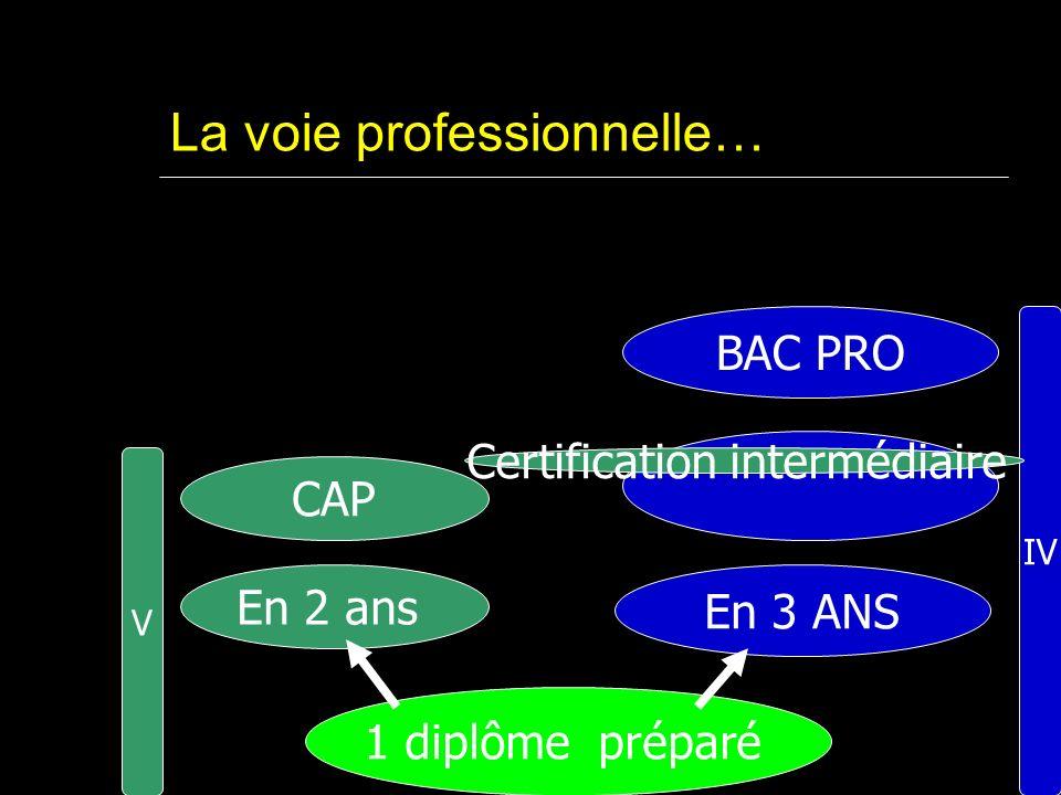 La voie professionnelle… 1 diplôme préparé En 2 ans En 3 ANS V IV BAC PRO CAP Certification intermédiaire